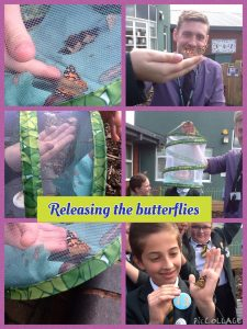 Releasing the butterflies 2